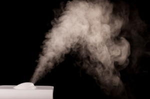 Benefits of Humidifiers and Air Purification for your Green Home