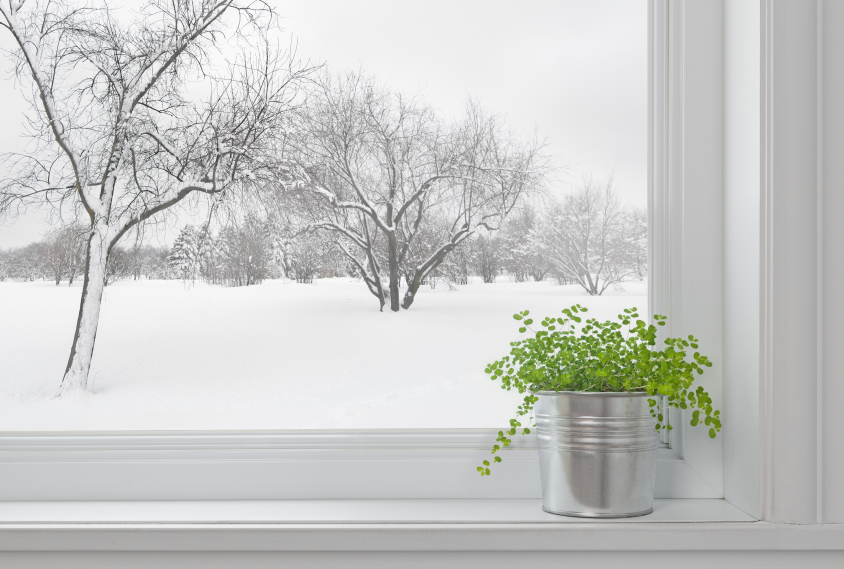 Winter Window Care: Eco-Friendly Home Building Tips